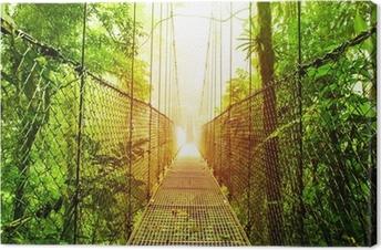 Tableau sur toile Arenal Hanging Bridges parc du Costa Rica