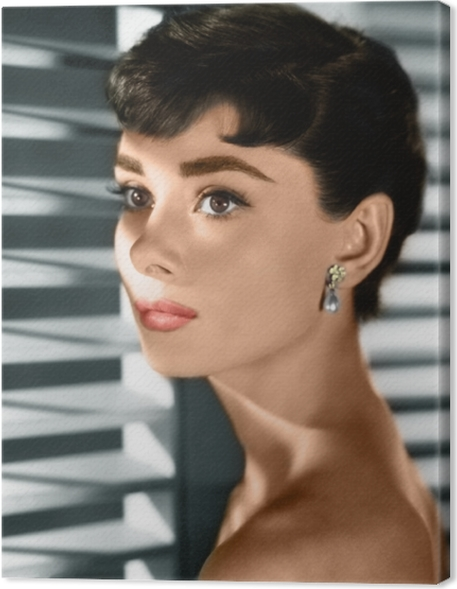 Tableau sur toile Audrey Hepburn - Criteo
