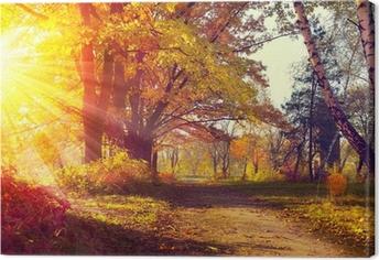 Tableau sur toile Automne. Automnal Park. Arbres et des feuilles à la lumière du soleil d'automne