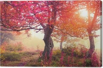 Tableau sur toile Autumn forest
