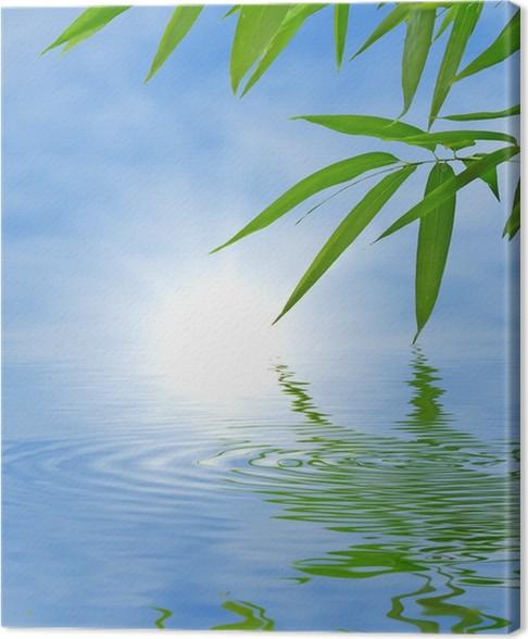 tableau sur toile bambou et le ciel qui se refl te dans l. Black Bedroom Furniture Sets. Home Design Ideas