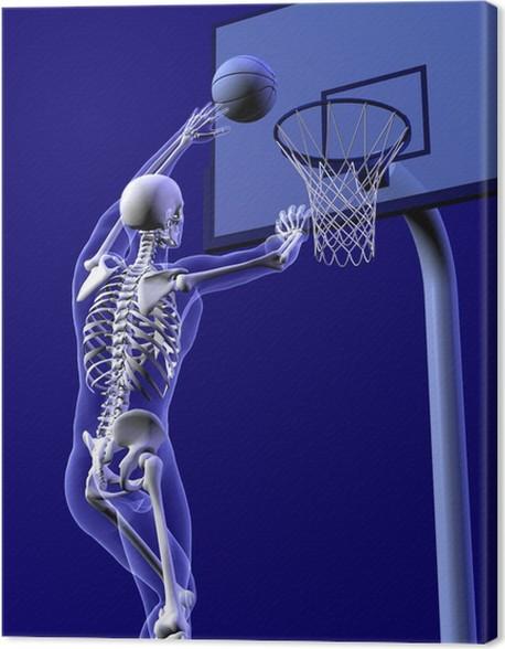 13bd0d2a83a6a Tableau sur toile Basket-ball anatomie - près recadrée - Santé et médecine