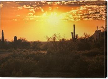Tableau sur toile Belle vue de coucher du soleil du désert de l'Arizona avec des cactus