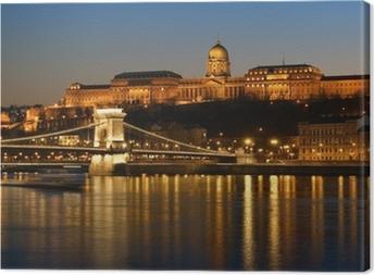 Tableau sur toile Budapest la nuit.
