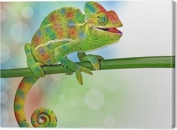 Tableau sur toile Caméléons et de couleurs