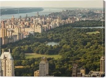 Tableau sur toile Central Park, New York City