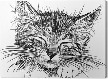 Tableau sur toile Chat de sommeil