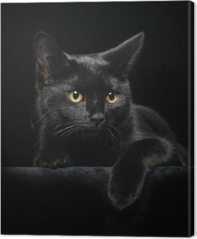 Tableau sur toile Chat noir avec des yeux jaunes