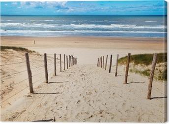 Tableau sur toile Chemin de la plage