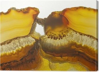 Tableau sur toile Close up d'une tranche Agate Gemstone