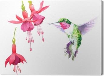 Tableau sur toile Colibri oiseau aquarelle battant autour de la fuchsia fleurs dessinés à la main été jardin illustration jeu isolé sur fond blanc