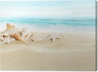 Tableau sur toile Coquillages sur la plage de sable
