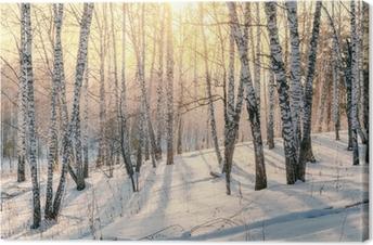 Tableau sur toile Coucher de soleil dans une forêt d'hiver