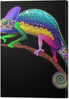 Tableau sur toile Couleurs Chameleon Fantaisie arc-
