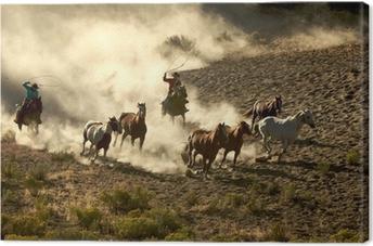 Tableau sur toile Cowgirl et cowboy galop des chevaux sauvages au lasso et