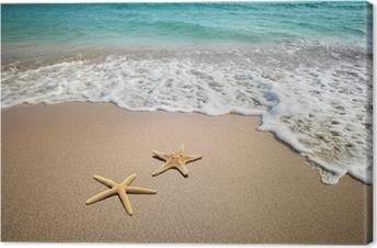 Tableau sur Toile Deux étoiles de mer sur une plage