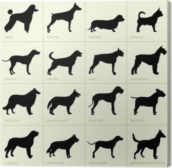 Tableau sur toile Différentes races de chiens
