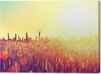Tableau sur toile Domaine. Paysage rural sous la lumière blanche