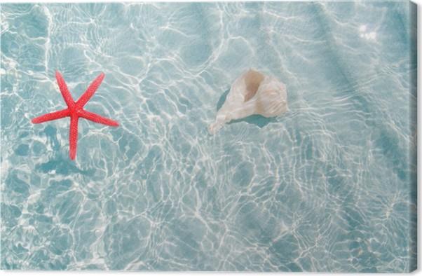 Tableau sur toile toiles de mer et coquillages dans clea plage de sable blanc pixers nous - Tableaux mer et plage ...