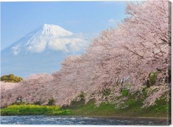 Tableau sur toile Fleurs de cerisier ou sakura et montagne fuji en arrière-plan