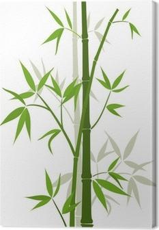 Tableau sur toile Fond de bambou, vecteur