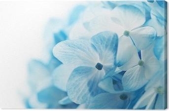 Tableau sur toile Fond fleurs