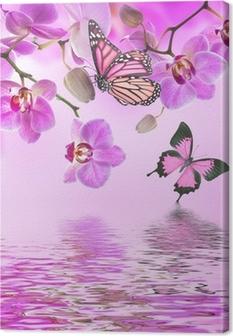 Tableau sur Toile Fond floral d'orchidées tropicales et le papillon