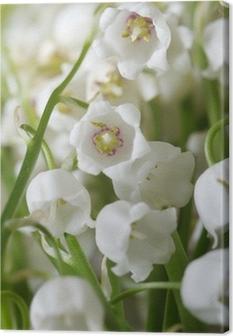 Tableau sur toile Fond floral de lys des fleurs de la vallée. verticale