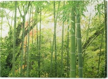 Tableau sur Toile Forêt de bambous