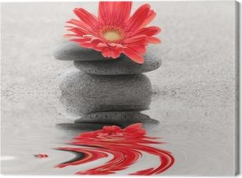 Tableau sur toile Galets et reflet gerbera zen