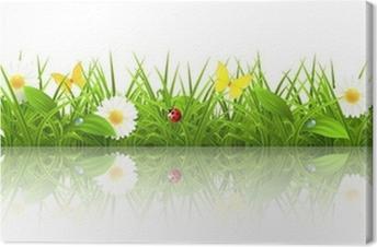 Tableau sur toile Green grass