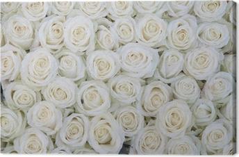 Tableau sur Toile Groupe de roses blanches après une averse de pluie