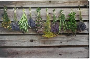 Tableau sur toile Herbes de séchage sur la grange en bois dans le jardin