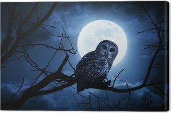 Tableau sur toile Hibou Montres Attentivement éclairé par la pleine lune la nuit d'Halloween