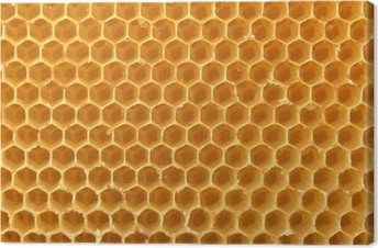 Tableau sur toile Honeycomb Background