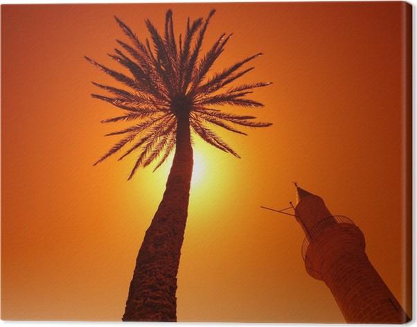 palmier islam