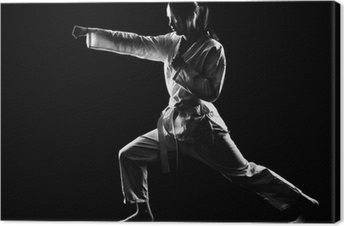 Tableau sur toile Karate girl