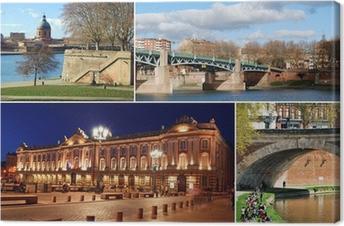 Tableau sur toile Le tourisme dans Toulouse