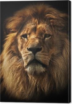 Tableau sur toile Lion portrait d'une riche crinière noire