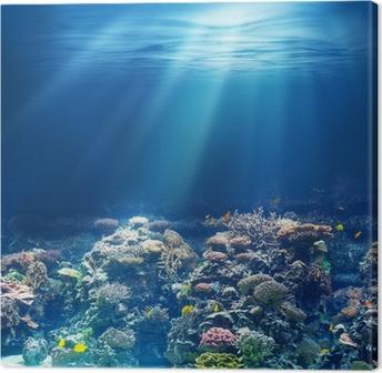 Tableau sur toile Mer ou l'océan récif corail sous-marin