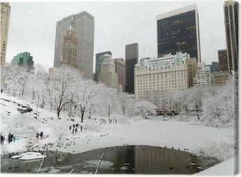 Tableau sur toile New York, Central Park dans la neige manhattan