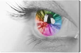 Tableau sur toile Oeil coloré