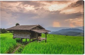 Tableau sur toile Paddy au coucher du soleil dans la province de Chiang Mai de la Thaïlande