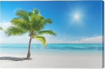 Tableau sur toile Palmier et mer