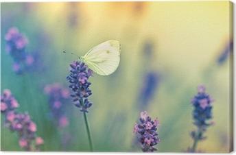 Tableau sur Toile Papillon sur la lavande
