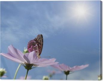 Tableau sur Toile Papillon sur marguerite