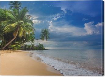 Tableau sur toile Paradise nature, l'eau de mer, l'été et l'hôtel maison sur le tropique