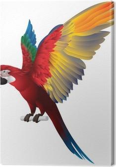 Tableau sur toile Parrot Ailes déployées