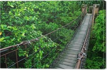Tableau sur toile Passerelle corde à travers la cime des arbres dans une forêt tropicale