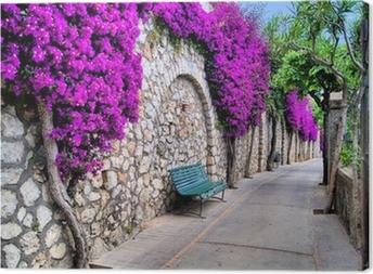 Tableau sur toile Petite rue avec un vieux mur et des fleurs violettes
